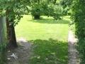speelweides_kleine_hondjes_pension_20130620_1546215367.jpg